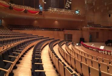 Virtueller Konzertsaal